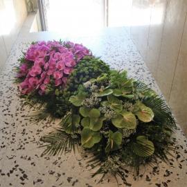 Copribara Anthurium e Phalaenopsis