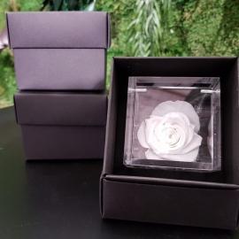 FLOWERCUBE 6X6 ROSA BIANCO
