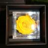 FLOWERCUBE 8X8 ROSA GIALLO
