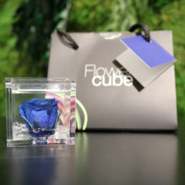 MINI FLOWERCUBE CM4,5X4,5 ROSA PRECIOUSE BLU+SHOPPER