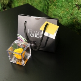 MINI FLOWERCUBE CM4,5X4,5 ROSA PRECIOUSE GIALLO+SHOPPER