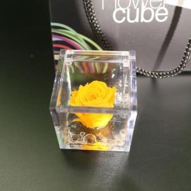 MINI FLOWERCUBE CM4,5X4,5 ROSA PRECIOUSE GIALLO+SHOPPER