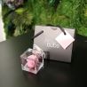MINI FLOWERCUBE CM4,5X4,5 ROSA PRECIOUSE ROSA+SHOPPER