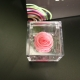 MINI FLOWERCUBE CM4,5X4,5 ROSA PRECIOUSE ROSA+SHOPPER
