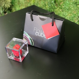 MINI FLOWERCUBE CM4,5X4,5 ROSA PRECIOUSE ROSSO+SHOPPER