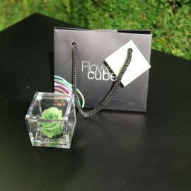 MINI FLOWERCUBE CM4,5X4,5 ROSA PRECIOUSE VERDE+SHOPPER