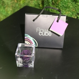 MINI FLOWERCUBE CM4,5X4,5 ROSA PRECIOUSE VIOLA+SHOPPER
