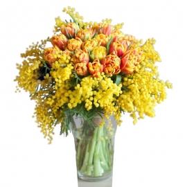Bouquet mimosa tulipani