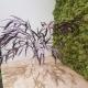 TREE FERN TIKI