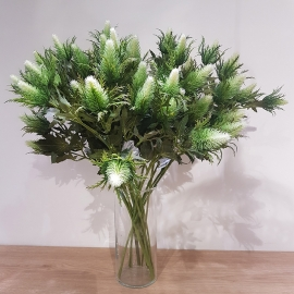SEA HOLLY SPRAY X 3 Green