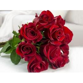 Rose Rosse Stelo Lungo 9 steli
