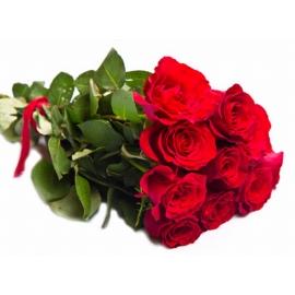 Rose Rosse Stelo Lungo 12 steli