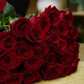 Rose Rosse Stelo Lungo 25 steli