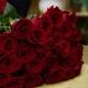 Rose Rosse San Valentino  Stelo Lungo