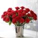 Rose Rosse SteloLungo 21 steli