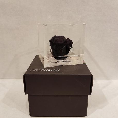 FLOWERCUBE 6X6 ROSA NERO