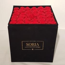 Scatola (Flower box) con rose stabilizzate h.30