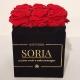 Scatola (Flower box) con rose stabilizzate h.15