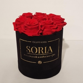 Scatola (Flower box) con rose Fresche.D15