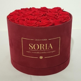 Scatola (Flower box) con rose Fresche.d.25