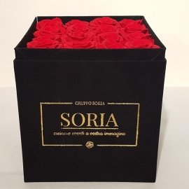 Scatola (Flower box) con rose Frescheh.20