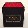 Scatola (Flower box) con rose stabilizzate h.20