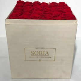 Scatola (Flower box) con rose Fresche h.30