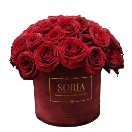 Scatola (Flower box) con 70 Rose Fresche D.15