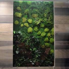 Quadro parete vegetale essenziale