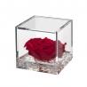 FLOWERCUBE 10X10 ROSA ROSSO