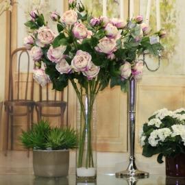 ROSA INGLESE Carbage Rose Bud 3 Fiori