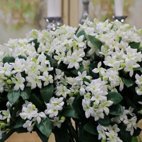 """23""""STEPHANOTIS SPRAY X2-white green"""