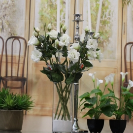 "25"" LISIANTHUS SPRAY,2F,2B-white"