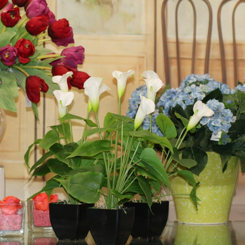Gruppo soria pianta finta artificiale pianta calla for Calla pianta