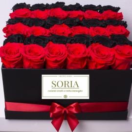 Scatola quadrata con Rose stabilizzate
